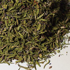 Hysope aromate - La Belle Verte