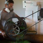 La Belle Verte - Producteur de plantes aromatiques et médicinales